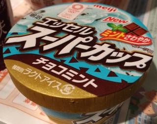 tyoko_minto_ice201807.jpg